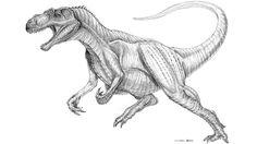 Allosaurus Ate Like a Terrifying Two-Ton Falcon - io9,com