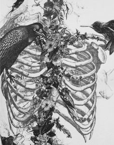 #sktech #ribs #raven #vines