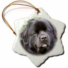 3dRose Newfoundland dog among trumpetvine - NA02 PWO0027 - PiperAnne Worcester, Snowflake Ornament, Porcelain, 3-inch