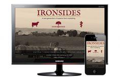 Ironsides Group, full image background website, simple design, cattle, farm management, animal health, sepia photos