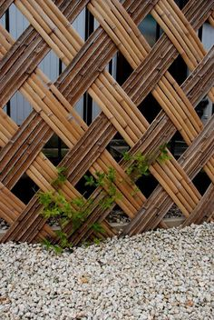 Delicate Backyard Fencing Metal Ideas 7 Astounding Cool Tips: Natural Fence Garden metal fence g Bamboo Wall, Bamboo Fence, Metal Fence, Bamboo Fencing Ideas, Bamboo Garden Ideas, Bamboo Screening Fence, Bamboo Ideas, Trellis Fence, Brick Fence