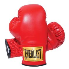Everlast-2964-Traditional-Boxing-Gloves-14-oz #muaythai #combatsports #mma #boxing #everlast
