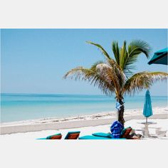 This is the most quaint island on the Gulf Coast, and is simply a great place to vacation visit. Florida City, Visit Florida, Best Vacations, Vacation Trips, Vacation Ideas, Great Places, Beautiful Places, Places To Travel, Places To Visit