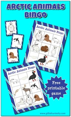 {free printable} - Gift of Curiosity Free Arctic Animals Bingo printable game. What a great resource for helping preschoolers, kindergartners, and other young kids learn the names of common Arctic animals! Preschool Themes, Preschool Printables, Preschool Class, Animal Activities, Animal Games, Artic Animals, Penguins And Polar Bears, Winter Activities For Kids, Preschool Winter