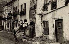 Ayvansaray'da at üstündeki güğümler ile süt satışı yapılan 1940'lı yıllar.