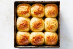 No-Knead Dinner Rolls Recipe Thanksgiving Plates, Thanksgiving Sides, Savory Scones, Savory Breakfast, Cheesy Mac And Cheese, Golden Crust, Dinner Rolls Recipe, Savoury Baking, Instant Yeast