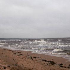 【vrednaja_panda】さんのInstagramをピンしています。 《#saulkrasti #latvia #baltic_sea #balticsea #ラトビア #海 #холодина Вот оно - родное балтийское море. Такое холодное, что шпроты у нас маленькие ;)》