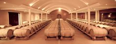 Chantegrive cellar of white wines White Wines, Cellar, Wood, Pictures, Life, Madeira, Photos, Woodwind Instrument, Wood Planks