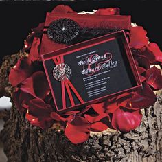 Four Chicago wedding vendors battle it out for the Designers' Challenge crown. Get inspired by their beautiful and creative wedding decor. Twilight Wedding, Twilight Series, Chicago Wedding, Wedding Vendors, Ali, Wedding Decorations, Challenges, Wedding Photography, Valentines