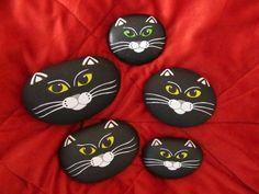 cat-rocks