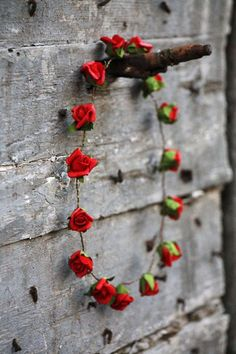 roses on a wall...