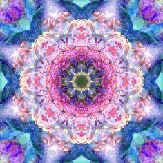 Blossom Mandala Charisma Photography at ArtistRising.com,  © Alaya Gadeh