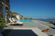 Are you looking for a luxury villa to rent for your holidays on Paros? We have many options for holiday villas and houses on Paros. Paros, Luxury Villa, Greek Islands, Villas, Outdoor Decor, Holiday, Luxury Condo, Greek Isles, Vacations