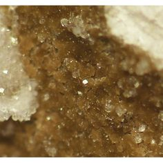 Nelenite,  (Mn,Fe++)16Si12As+++3O36(OH)17, Huanggang Mine, Ulanhad League, Inner Mongolia, China. Tiny brown crystals and aggregates on calcite matrix.