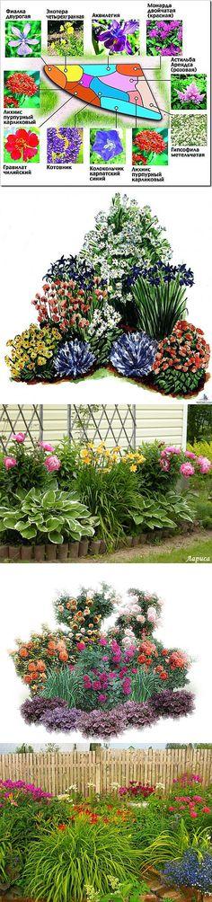 Красивые клумбы из многолетних цветов ..