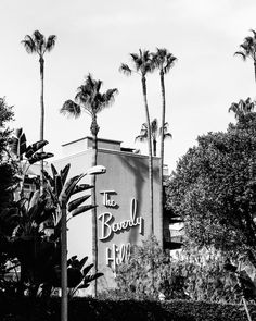 Beverly Hills Photography, Black and White Los Angeles Print, Los Angeles Print, Palm Trees, Beverly Hills Hotel, Black and White Wall Art by ColorPopPhotoShop on Etsy https://www.etsy.com/listing/271423809/beverly-hills-photography-black-and