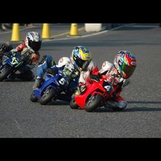 Kids on Pocket Bikes Picture    View EXCLUSIVE Images on Our Pinterest Page- Follow Us - http://pinterest.com/lcralliesinfo/    Ride safe,    JB	  Biker Rallies Info - www.LightningCustoms.com