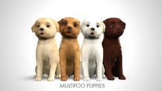 Multipoo Puppies by morganabanana - Sims 3 Downloads CC Caboodle