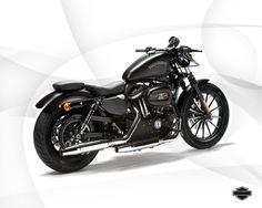 Softail Touring e Custom Pedaline CC O-Ring con supporto per Harley Davidson Sportster Dyna