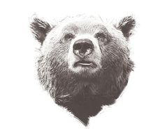 Bear. Digital Wildlife Art for Instant by DigitalArtDownloads