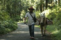 Ridwan Sururi vit à Java et s'occupe de chevaux. Trois jours par semaine, il prend la route, avec l'un d'eux, et une bibliothèque et lui harnache une bibliothèque mobile, baptisée Kuda Pustaka.