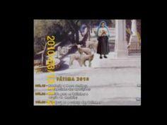a 13 de maio  carlos ribeiro  e maria celeste com joelhos ao chao 13 de ...