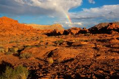 A rainbow shines above the red rock desert of Gold Butte National Monument in Nevada.