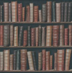 Library (F92328) - Albany Wallpapers - A traditional classic book case library design, perfect to create your own library effect, on a raised texture vinyl wallcovering. Showing in dull reds, browns and green - another colour way available. Please request a sample for true colour match.