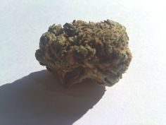 Developed by Planet of Kind, this superhero bud is a potent indica that provides full-body relief. This bud is reported to provide a very sedative medicative effect, keeping its users fully relaxed and ready for sleep. Because of this strain's high potency, it is not recommended for users who have a low tolerance for THC. This strain has a pungent scent with hints of floral notes, and the buds are medium in size and very dense, they are an earthy forest green in color with a light dusting of…