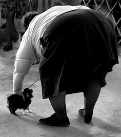 Elliott Erwitt Dogs | by the featured photographers selected for the Portfolio Showcase 2009 ...