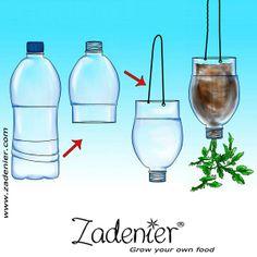 #Grow your #tomato up sign down.  www.zadenier.com