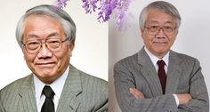 日本40年經驗的癌症專家驚爆:千萬別上癌症的當!