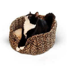 The K&H Pet Products Lazy Cup Pet Bed is made entirely of microfleece so it's incredibly soft and warm. This adorable pet bed has a cup shape. Indestructable Dog Bed, Cat Merchandise, Wireless Dog Fence, Bed Images, Leopard Cat, Cat Feeder, Dogs For Sale, Pet Furniture, Dog Carrier