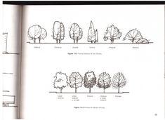 TECHOS ARBOLES PAVIMENTOS TEXTURAS #landscapearchitecture #LandscapeSketch
