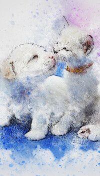 Cat Dog Art Wallpaper Wallpapers Vintage Art Wallpaper Cute Wallpapers