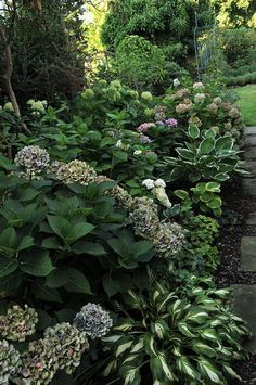 Fancy Eure Gartenbilder Beete Gestaltungsideen Traumsommer Seite Gartengestaltung Sch ner GartenGarten