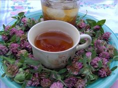 Red Clover Tea A quick way to detoxify your body and clear your system of excess… Herbal Remedies, Home Remedies, Natural Remedies, Detoxify Your Body, Wild Edibles, Edible Flowers, Edible Plants, Medicinal Herbs, Tea Recipes