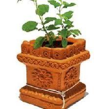 Tulasi Plant, Cute Illustration, Telugu, Planter Pots, Plants, House, Home, Plant, Funny Illustration