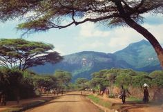 Moroto District Karamoja Uganda