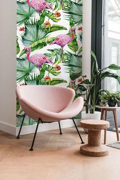 Flamingo in the Tropics removable wallpaper   COLORAYdecor.com
