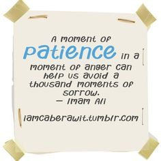 A moment of patience in a moment of anger can help us avoid a thousand moments of sorrow - Imam Ali