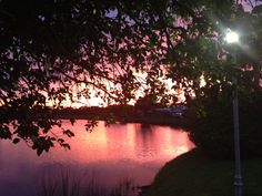 On a Golden Pond – A perfect Florida evening with a spectacular sunset.