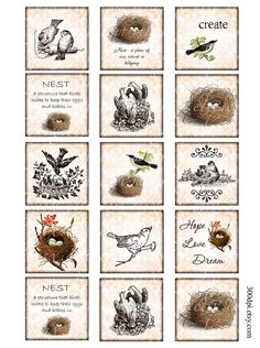 2x2 inch squares Vintage Printable Tags Background Digital Collage Sheet large images nest bird Download and Print scrapbooking card making