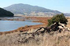 Rush Creek Open Space Preserve