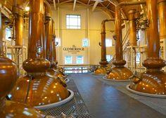 Each distillery features a unique pot still design, an important ingredient to a whisky's taste. Glenmorangie Distillery, Whiskey Distillery, Whisky Tasting, Pot Still, Columns, Pots, Trail, Copper, Plant
