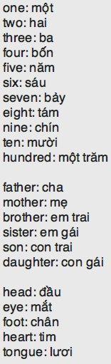 29 Best Learn Vietnamese images | Learn vietnamese ... Vietnamese Curse Words
