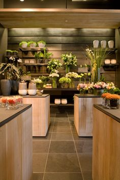 I like the lighting for the back shelves. Flower Shop Decor, Flower Shop Design, Shop Interior Design, Store Design, Florist Shop Interior, Flower Shop Interiors, Winston Flowers, Flower Cafe, Flower Boutique