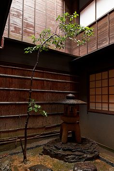 The garden inside the Japanese house: photo by Bernard Languillier, via garden design design ideas Japanese Interior, Japanese Design, Design Oriental, Traditional Japanese House, Japan Garden, Modern Garden Design, Landscape Design, Japanese Aesthetic, Japanese Architecture