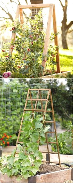 Create enchanting garden spaces with 21 beautiful and DIY friendly trellis and garden structures, such as tunnels, teepees, pergolas, screens and more! - A Piece Of Rainbow #VegetableGardening