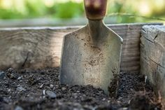 Healthy soil is the main thing for healthy plants. Healthy soil is good for healthy environment. Garden soil should be clean and clear in order to grow up plants. Healthy soil needs less fertilizer… Gardening For Beginners, Gardening Tips, Flower Gardening, Gardening Services, Mittleider Gardening, Culture Tomate, Natural Farming, Old Farmers Almanac, Pot Jardin